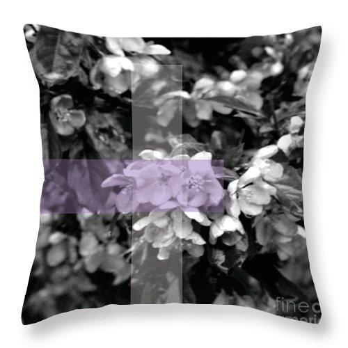 Jamie Lynn Gabrich Throw Pillow featuring the photograph Kin by Jamie Lynn