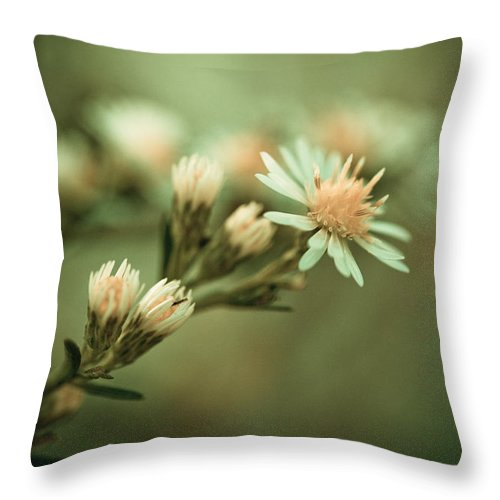 Flower Throw Pillow featuring the photograph Kiss by Shane Holsclaw