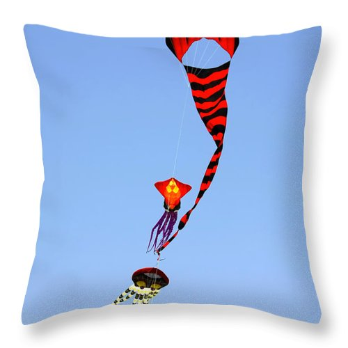 Kite Throw Pillow featuring the photograph Kites Over Baja California by Christine Till
