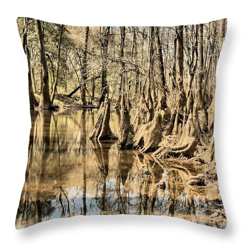 Congaree National Park Throw Pillow featuring the photograph Kneeling On The Edge by Adam Jewell