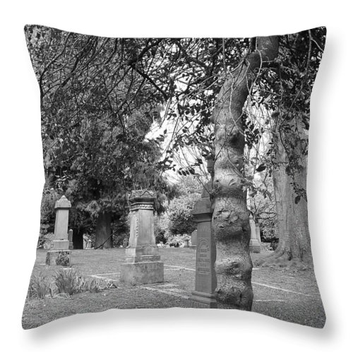 Tree Throw Pillow featuring the photograph Knotty Tree by Heather L Wright