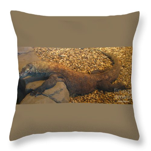 Art For The Wall...patzer Photography Throw Pillow featuring the photograph Komodo by Greg Patzer