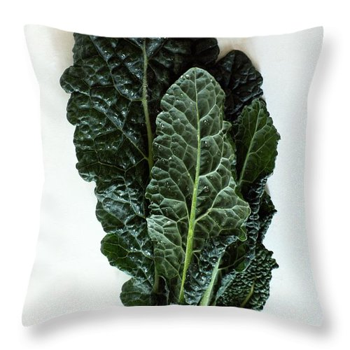 Food Throw Pillow featuring the photograph Lacinato Kale by Romulo Yanes