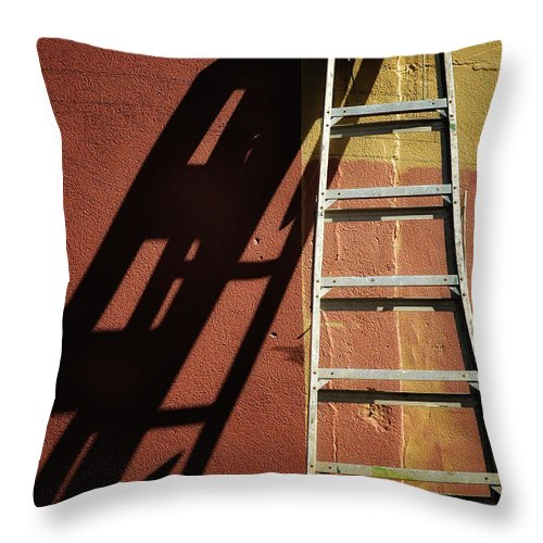 Riverside Gardens Park Throw Pillow featuring the photograph Ladder And Shadow On The Wall by Gary Slawsky