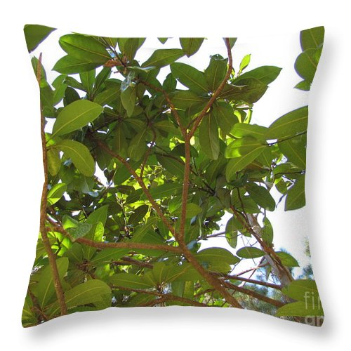 Tree Throw Pillow featuring the photograph Lady Magnolia by Julia Stubbe