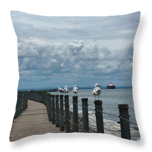 Clouds Throw Pillow featuring the photograph Lake Erie Gulls by Gothicrow Images