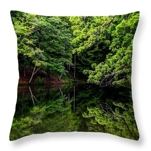 Issaqueena Throw Pillow featuring the photograph Lake Issaqueena by Steven Faucette