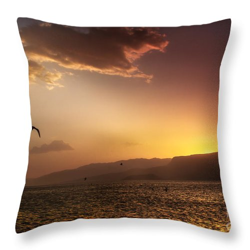 Sunset Throw Pillow featuring the photograph Lake Mead Sunrise by Robert Bales
