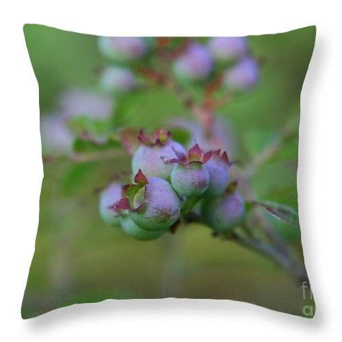 Flower Photography Throw Pillow featuring the photograph Lake Side by Neal Eslinger
