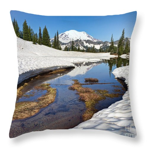 Landscape Throw Pillow featuring the photograph Lake Tipsoo Thaw by Don Hall