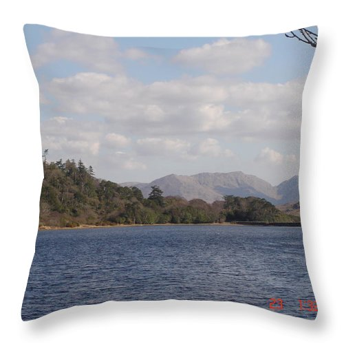 Lake Throw Pillow featuring the photograph Lake View by Martin Masterson