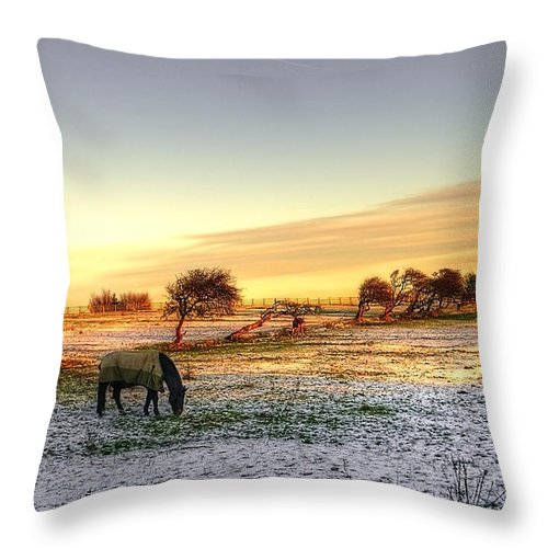 Tree Throw Pillow featuring the photograph Landscape And Horse by Svetlana Sewell