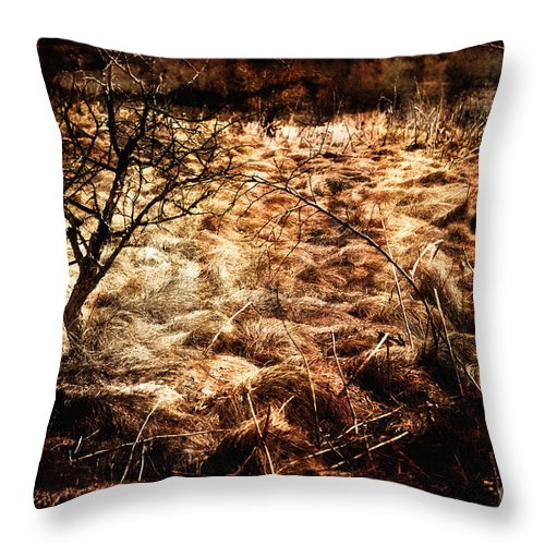 Landscape Throw Pillow featuring the photograph Landscape Of Life by Miss Dawn