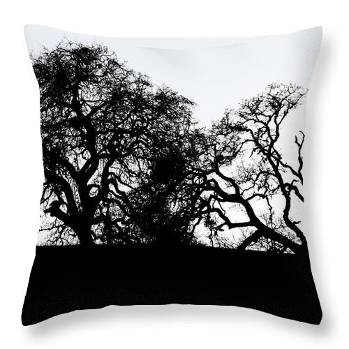 Horse Throw Pillow featuring the photograph Final Journey by Bob Christopher