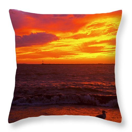 Beach Throw Pillow featuring the photograph Last Light by Joe Geraci