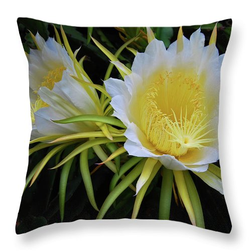Hawaii Throw Pillow featuring the photograph Late Bloomer by Jani Freimann