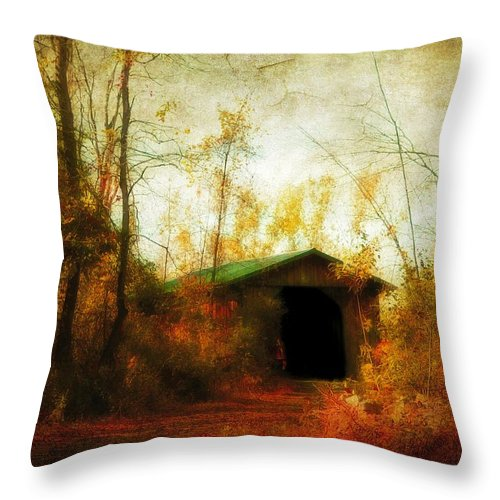 Fall Throw Pillow featuring the photograph Late October by Gothicrow Images