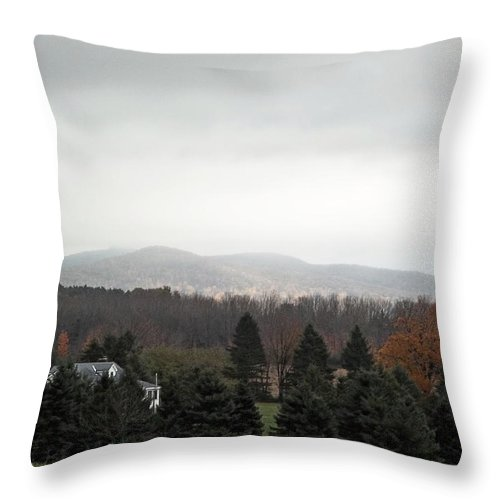 Landscape Throw Pillow featuring the photograph Late October Scene by Theodore Rice