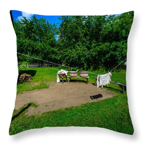 Eagle Throw Pillow featuring the photograph Laundry Day by Randy Scherkenbach