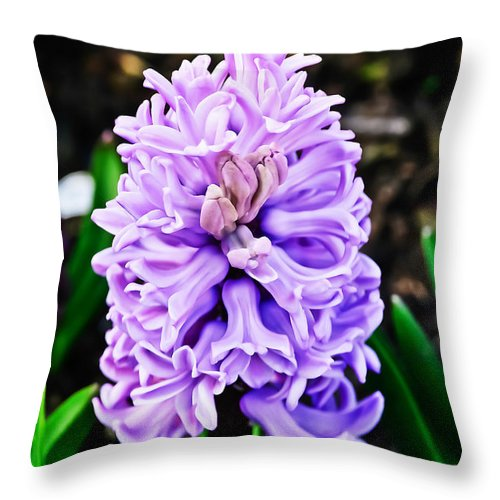 Nature Throw Pillow featuring the photograph Lavendar Trumpets by Elvis Vaughn