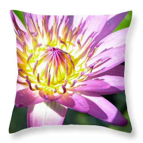 Season Throw Pillow featuring the photograph Lavillita Flower 10117 by Jerry Sodorff