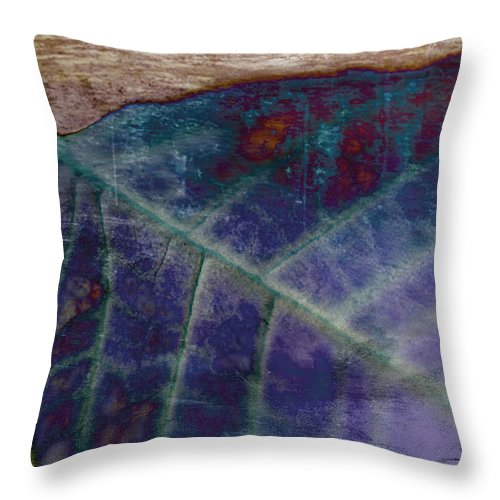 Leaf Throw Pillow featuring the photograph Leaf Abstract by Scott Pellegrin