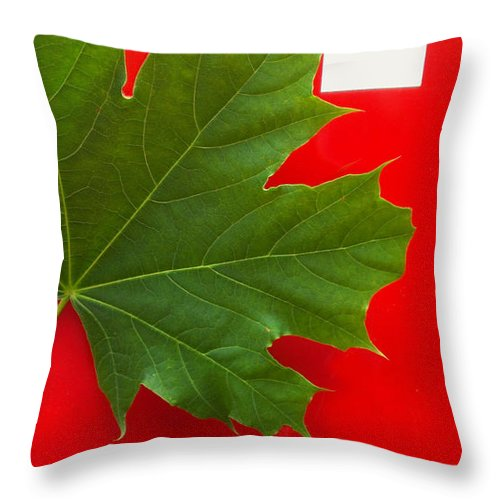 Leaf Throw Pillow featuring the photograph Leaf On Sign by Catherine Ratliff