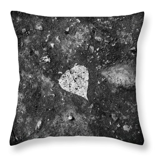 Leaf Throw Pillow featuring the photograph Leaf by Roberto Giobbi