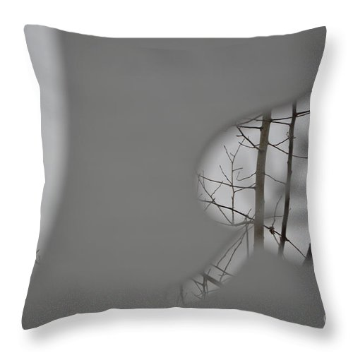 Leafless Throw Pillow featuring the photograph Leafless by Brian Boyle