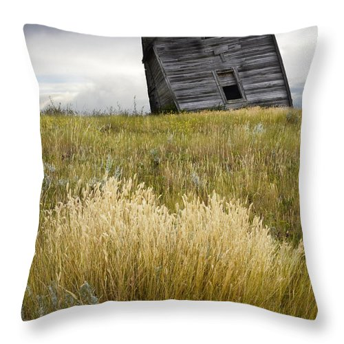 Homestead Throw Pillow featuring the photograph Leaning A Little by Bob Christopher