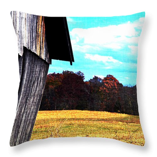 Barn Throw Pillow featuring the photograph Leaning by Carlee Ojeda