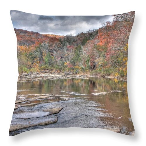 Creek Throw Pillow featuring the photograph Lee Creek by Tony Colvin
