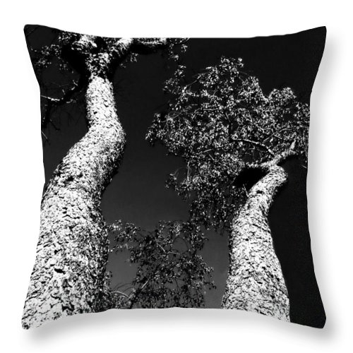 Black And White Throw Pillow featuring the photograph Legs by Diana Angstadt