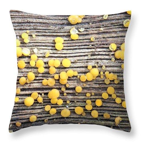 Bisporella Citrina Throw Pillow featuring the photograph Lemon Drops by Doris Potter