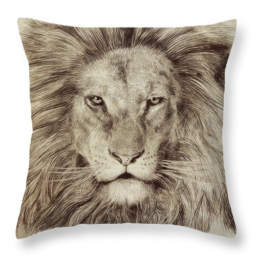 Lion Throw Pillow featuring the drawing Leo by Eric Fan