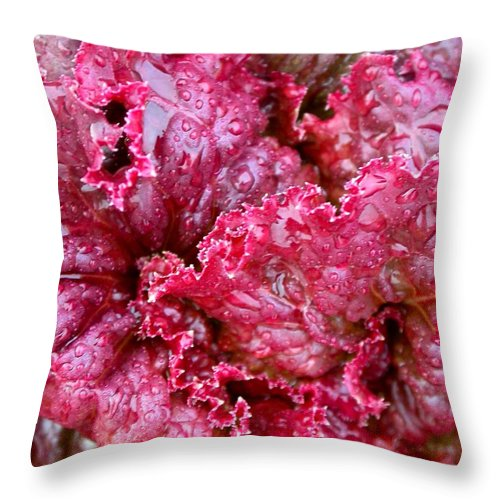 Throw Pillow featuring the photograph Lettuce by Cynthia Wallentine