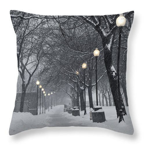 Lights Throw Pillow featuring the photograph Levee Park Lights by Al Mueller