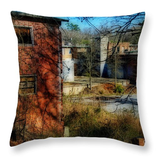 Cenic Tours Throw Pillow featuring the photograph Lexington Mill by Skip Willits