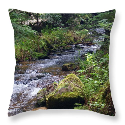 Nature Throw Pillow featuring the photograph Liberty Creek 2014 #3 by Ben Upham III