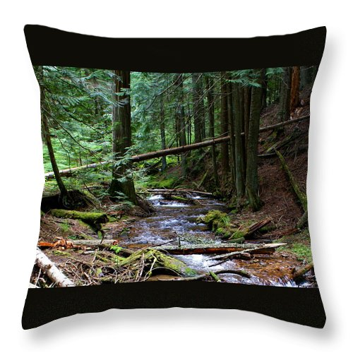 Nature Throw Pillow featuring the photograph Liberty Creek 2014 #5 by Ben Upham III