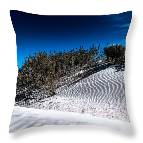 White Sands Throw Pillow featuring the photograph Life In The White Sands by Julian Cook