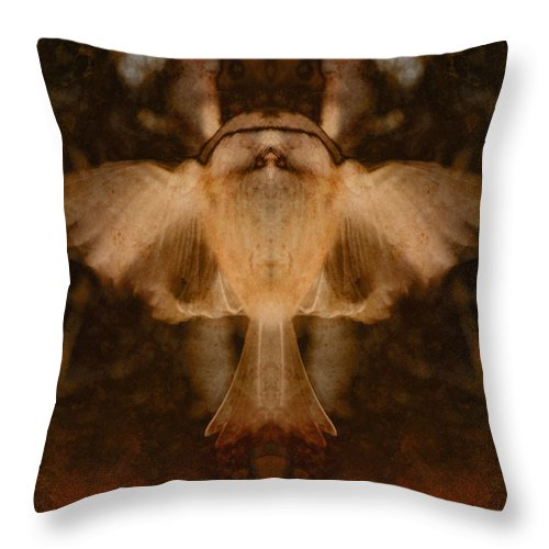 Flight Throw Pillow featuring the photograph Lift by WB Johnston