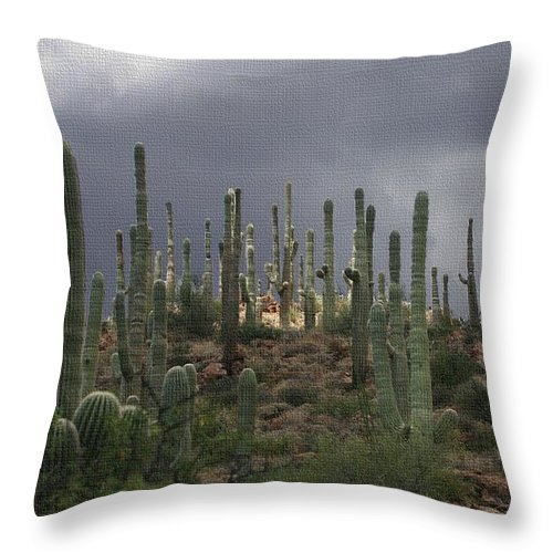 Light At The Top Throw Pillow featuring the photograph Light At The Top by Tom Janca