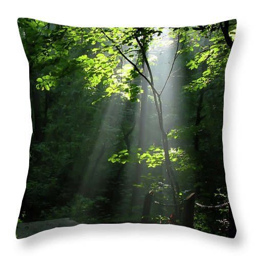 Light Throw Pillow featuring the photograph Light by Douglas Stucky