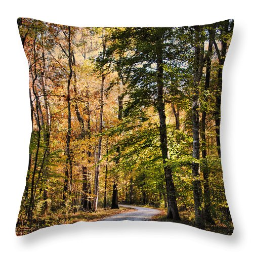 Autumn Throw Pillow featuring the photograph Light Your Way by Jai Johnson