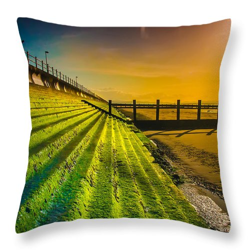 Water Throw Pillow featuring the photograph Lighting The Way by Darren Wilkes