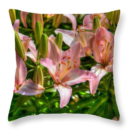 Flower Throw Pillow featuring the photograph Lilies by M Dale
