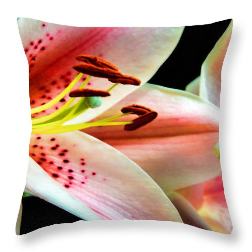 Botanical Gardens Throw Pillow featuring the photograph Lilies by Pat Cook