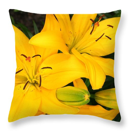 Flower Throw Pillow featuring the photograph Lillies In Yellow by Laurel Talabere