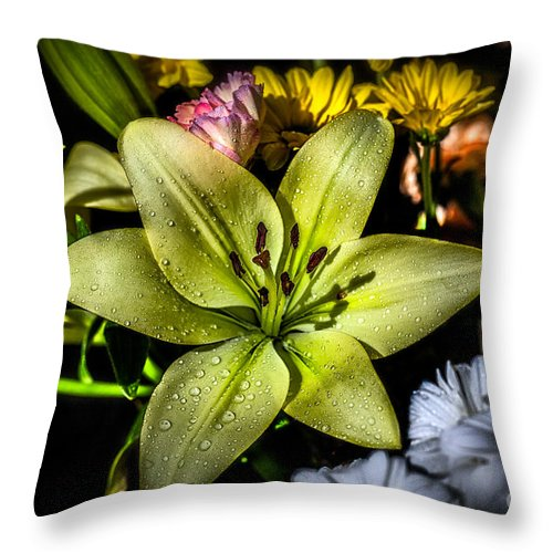 Blossom Throw Pillow featuring the photograph Lily by Adrian Evans